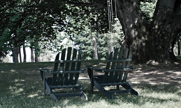 Adirondack Chairs Beneath a Tree at the Cranwell Resort, Spa, and Golf Club