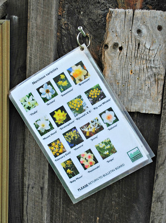 Plant identification cards at Long Hill