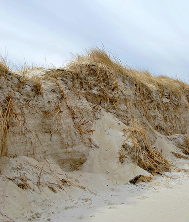 Some of the storm damage to the dunes at Crane Beach