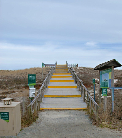 Boardwalk to the Beach Area
