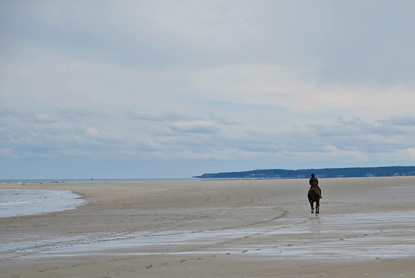 Horseback Riding Along Crane Beach
