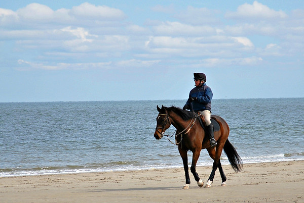 Horseback Riding on Crane Beach